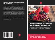 Copertina di Produtividade económica da água em Blackberry