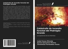 Capa do livro de Catástrofe de incendio forestal del Pedrógão Grande