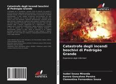 Copertina di Catastrofe degli incendi boschivi di Pedrógão Grande