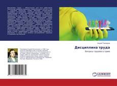 Bookcover of Дисциплина труда