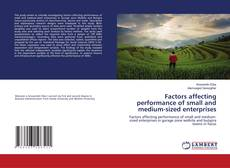 Bookcover of Factors affecting performance of small and medium-sized enterprises
