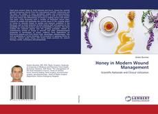 Honey in Modern Wound Management kitap kapağı