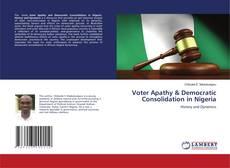 Обложка Voter Apathy & Democratic Consolidation in Nigeria