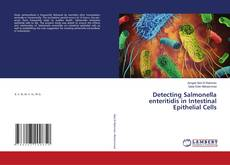 Bookcover of Detecting Salmonella enteritidis in Intestinal Epithelial Cells