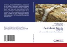 Bookcover of Fly Ash Based Bacterial Concrete