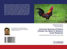Couverture de Intensive Rearing of Native Chicken for Meat in Western Tamil Naduinte