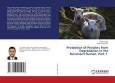 Bookcover of Protection of Proteins from Degradation in the Ruminant Rumen. Part 1