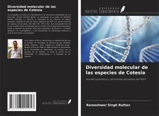 Diversidad molecular de las especies de Cotesia kitap kapağı