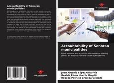 Обложка Accountability of Sonoran municipalities