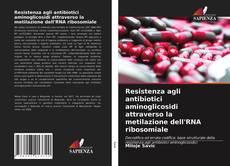 Resistenza agli antibiotici aminoglicosidi attraverso la metilazione dell'RNA ribosomiale kitap kapağı