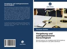 Bookcover of Vergebung und wahrgenommene Gerechtigkeit