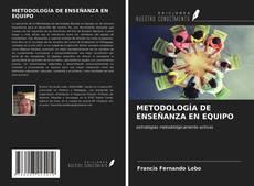 Обложка METODOLOGÍA DE ENSEÑANZA EN EQUIPO