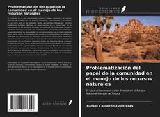 Bookcover of Problematización del papel de la comunidad en el manejo de los recursos naturales