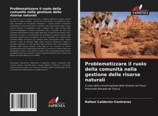 Couverture de Problematizzare il ruolo della comunità nella gestione delle risorse naturali