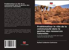 Bookcover of Problématiser le rôle de la communauté dans la gestion des ressources naturelles