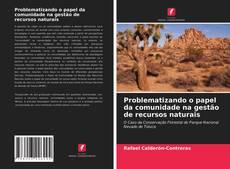 Borítókép a  Problematizando o papel da comunidade na gestão de recursos naturais - hoz