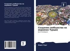 Создание сообщества на окраинах Турции的封面
