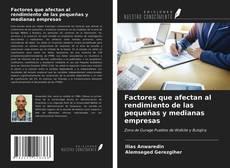 Buchcover von Factores que afectan al rendimiento de las pequeñas y medianas empresas