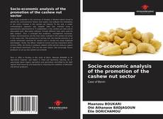 Buchcover von Socio-economic analysis of the promotion of the cashew nut sector