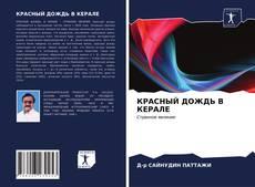 Borítókép a  КРАСНЫЙ ДОЖДЬ В КЕРАЛЕ - hoz