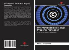 Bookcover of International Intellectual Property Protection