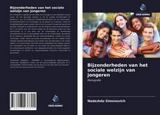 Capa do livro de Bijzonderheden van het sociale welzijn van jongeren