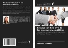 Bookcover of Estatus jurídico civil de las asociaciones públicas