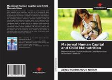 Bookcover of Maternal Human Capital and Child Malnutrition