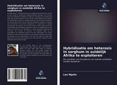 Bookcover of Hybridisatie om heterosis in sorghum in zuidelijk Afrika te exploiteren