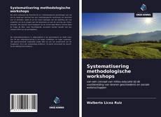 Copertina di Systematisering methodologische workshops
