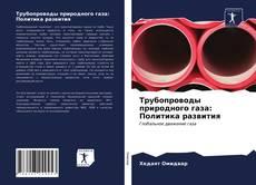 Трубопроводы природного газа: Политика развития kitap kapağı