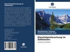 Kieselalgenforschung im Süßwasser: kitap kapağı