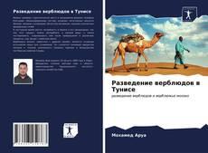 Bookcover of Разведение верблюдов в Тунисе