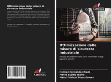 Bookcover of Ottimizzazione delle misure di sicurezza industriale