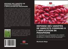 Bookcover of RÉPONSE DES VARIÉTÉS DE HARICOTS COMMUNS À L'APPLICATION DE PHOSPHORE