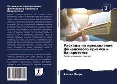 Buchcover von Расходы на преодоление финансового кризиса и банкротство