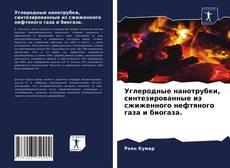 Portada del libro de Углеродные нанотрубки, синтезированные из сжиженного нефтяного газа и биогаза.