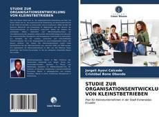 Capa do livro de STUDIE ZUR ORGANISATIONSENTWICKLUNG VON KLEINSTBETRIEBEN