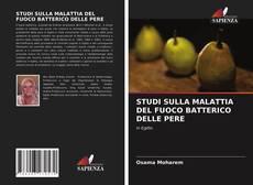 Bookcover of STUDI SULLA MALATTIA DEL FUOCO BATTERICO DELLE PERE