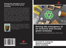 Driving the emergence of an inclusive and circular green economy的封面