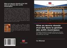 Mise en œuvre réussie d'un SIG dans la gestion des actifs municipaux kitap kapağı
