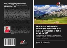 Bookcover of Una valutazione del ruolo del database VIA nella promozione della pratica VIA