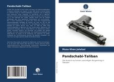 Portada del libro de Pandschabi-Taliban
