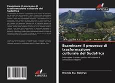 Bookcover of Esaminare il processo di trasformazione culturale del Sudafrica