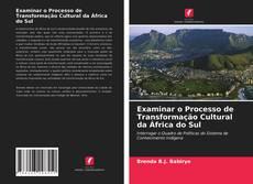 Bookcover of Examinar o Processo de Transformação Cultural da África do Sul