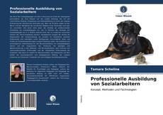 Обложка Professionelle Ausbildung von Sozialarbeitern