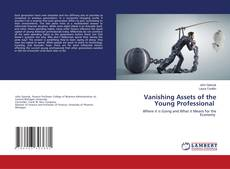 Copertina di Vanishing Assets of the Young Professional