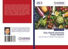 Gida Tedari̇k Zi̇nci̇ri̇nde Enerji̇ Tüketi̇mi̇ kitap kapağı