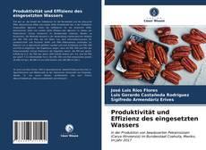 Buchcover von Produktivität und Effizienz des eingesetzten Wassers