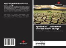 Bookcover of Agricultural valorization of urban waste sludge